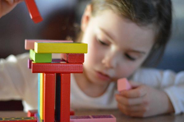 Dromader – zestaw klocków dla dziewczynki
